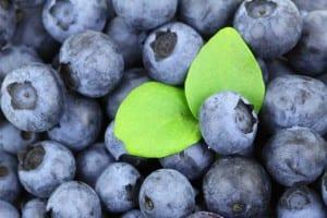 Alimentos afrodisíacos e o poder da mente